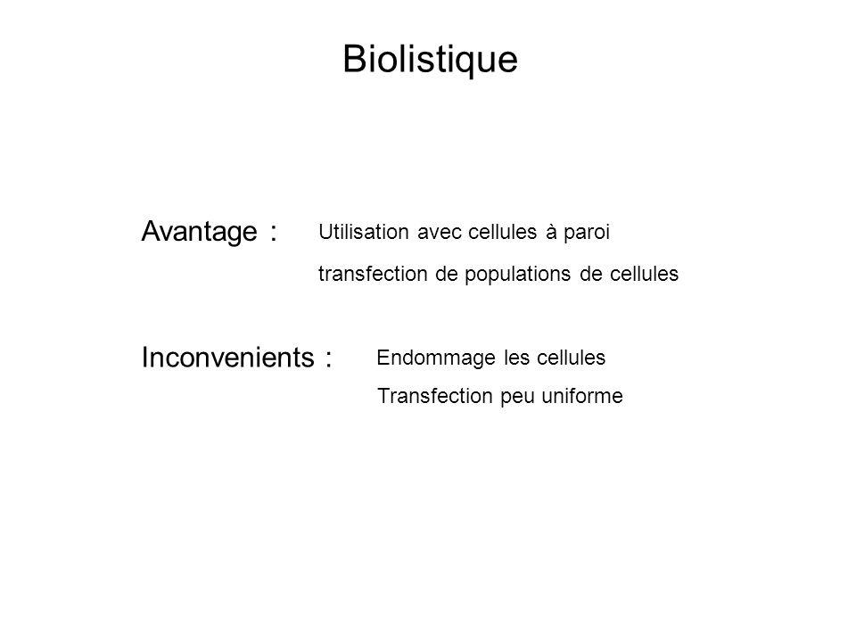 Avantage : Inconvenients : Utilisation avec cellules à paroi transfection de populations de cellules Endommage les cellules Transfection peu uniforme