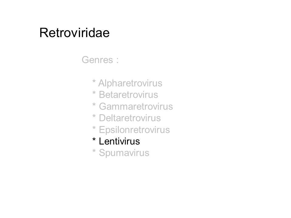 Genres : * Alpharetrovirus * Betaretrovirus * Gammaretrovirus * Deltaretrovirus * Epsilonretrovirus * Lentivirus * Spumavirus Retroviridae