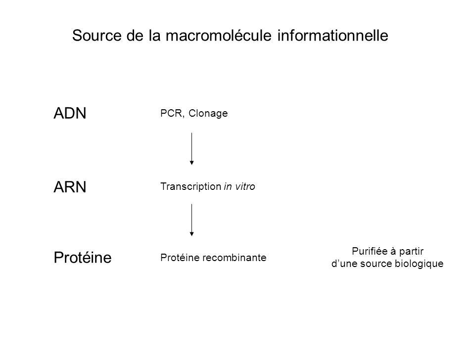 Source de la macromolécule informationnelle Purifiée à partir d'une source biologique Protéine recombinante ADN ARN Protéine PCR, Clonage Transcriptio