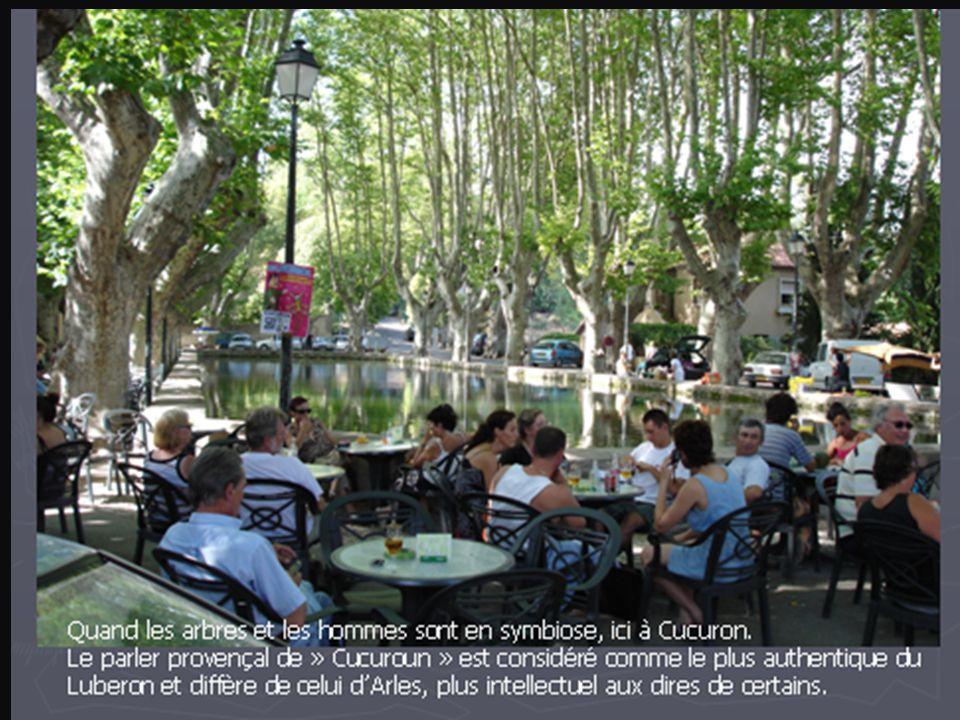 La plus petite « capitelle » de Provence, issue de mes blanches mains, un jour d'immobilisation obligatoire suite chute fracturale….