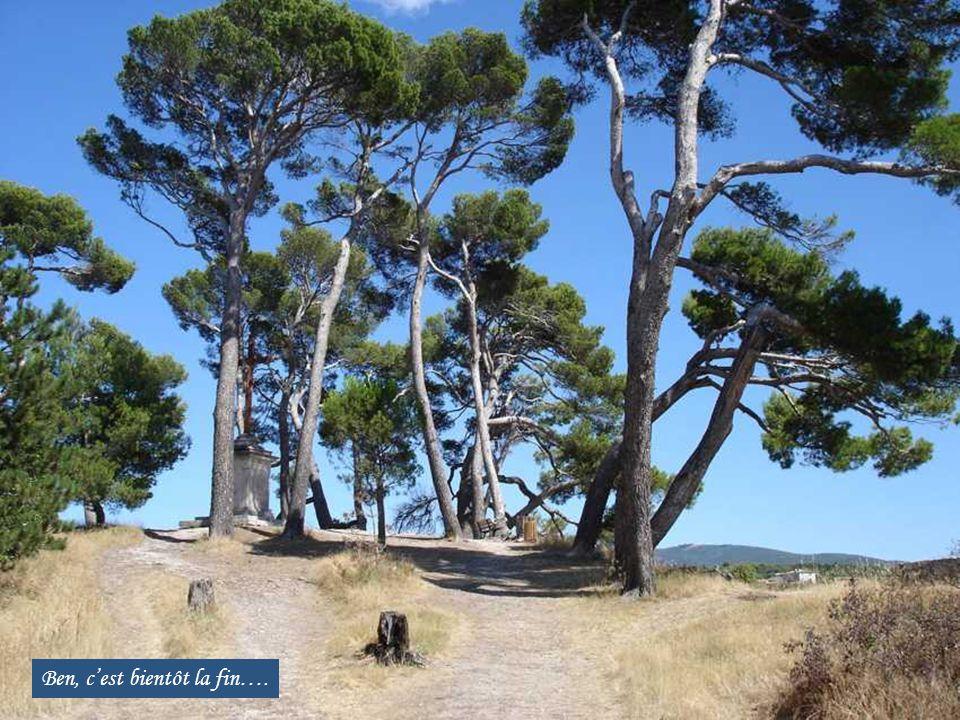 Lauris, en face de la Roque, de l'autre côté de la Durance