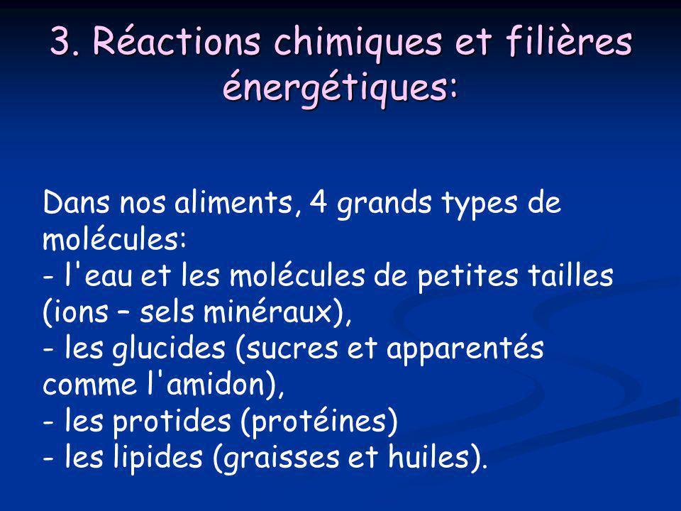3. Réactions chimiques et filières énergétiques: Dans nos aliments, 4 grands types de molécules: - l'eau et les molécules de petites tailles (ions – s
