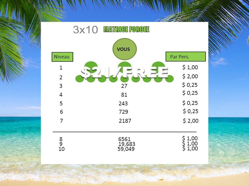 Vous êtes PAYE ! 1) Cha-Ching Booking (réservation online) 2) Matrice 3x10 forcée (mensuel) 3) Matching Bonus (mensuel) 4) Coding Bonus (semaine)