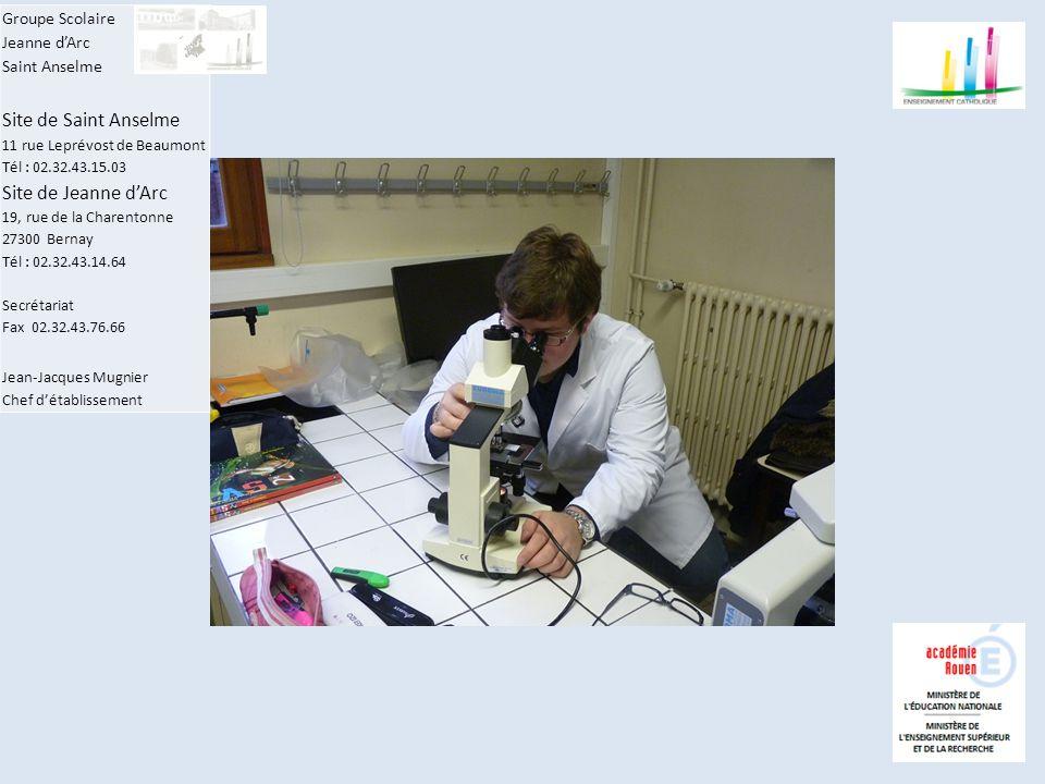 Groupe Scolaire Jeanne d'Arc Saint Anselme Site de Saint Anselme 11 rue Leprévost de Beaumont Tél : 02.32.43.15.03 Site de Jeanne d'Arc 19, rue de la Charentonne 27300 Bernay Tél : 02.32.43.14.64 Secrétariat Fax 02.32.43.76.66 Jean-Jacques Mugnier Chef d'établissement Intérêt de l'utilisation des microscopes (Motic B 30312961) : Le microscope optique permet de visualiser des objets vivants (bactéries, levures, organismes unicellulaires) ou fixés (coupes de tissus) à l'échelle cellulaire.