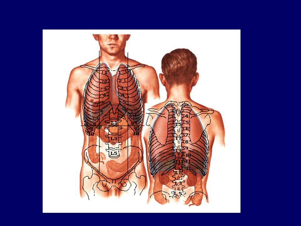 ATTENTION •Le patient peut se dégrader brutalement –hémopéritoine en 2 temps par rupture d'un hématome –péritonite sur perforation digestive différée ou passée inaperçue à l'admission CHIRURGIE EN URGENCE