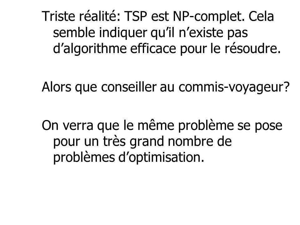 Triste réalité: TSP est NP-complet. Cela semble indiquer qu'il n'existe pas d'algorithme efficace pour le résoudre. Alors que conseiller au commis-voy