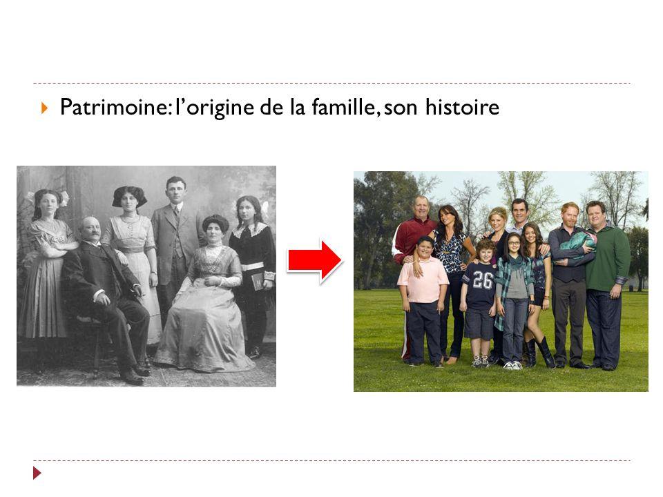 Patrimoine: l'origine de la famille, son histoire