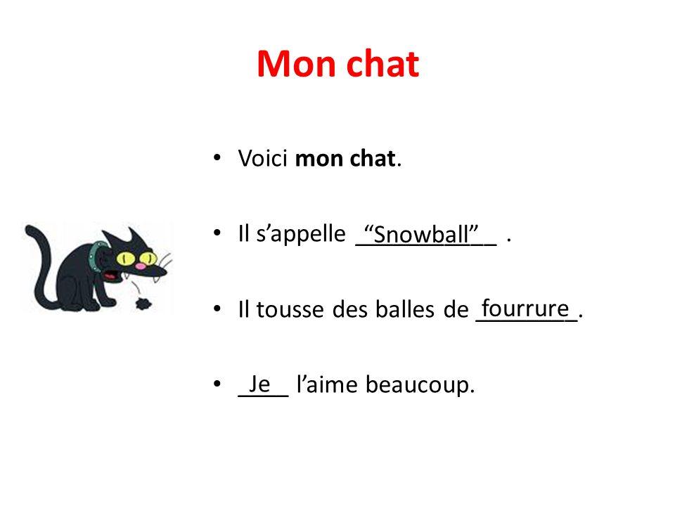 """Mon chat • Voici mon chat. • Il s'appelle ___________. • Il tousse des balles de ________. • ____ l'aime beaucoup. """"Snowball"""" fourrure Je"""