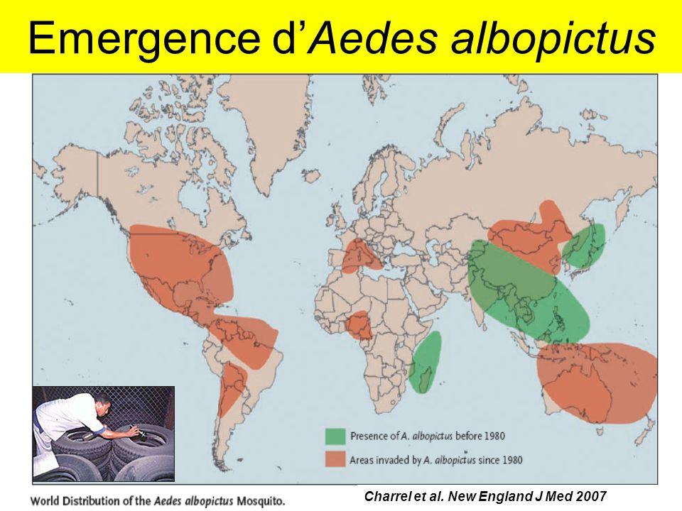 Emergence d'Aedes albopictus journée Claude Bernard, 15/11/201117 Charrel et al. New England J Med 2007
