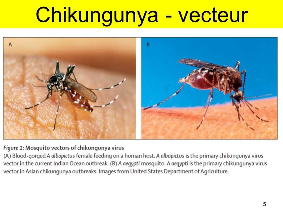 Les causes de l'émergence •Réchauffement climatique => Prolifération vecteurs (Kenya, 2004) •Implantation en territoire naïf (iles océan Indien) •Taux d'attaque 33% –La Réunion, Comores, Mayotte, Seychelles •Microévolution du génome de CHIKV –Mutation protéine d'enveloppe (E1-A226V) –adaptation à un vecteur anthropophile, résistant et efficace: Aedes albopictus 16 Tsetsarkin et al.