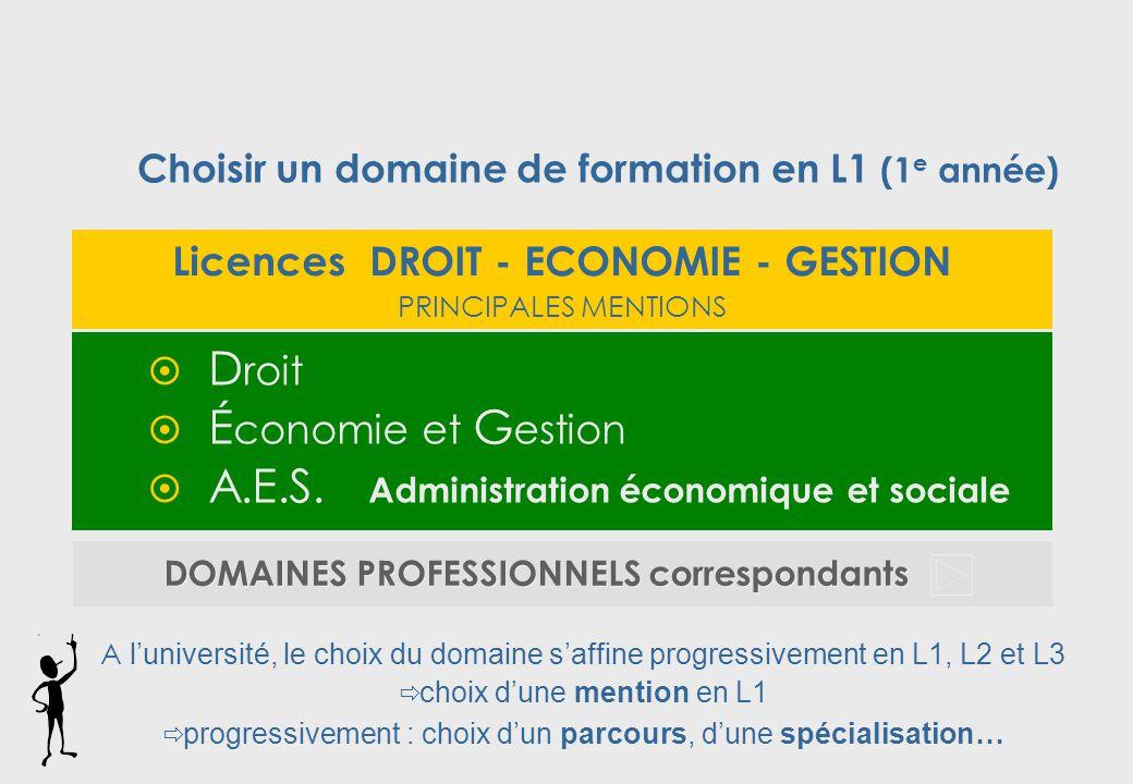 Licences DROIT - ECONOMIE - GESTION PRINCIPALES MENTIONS  D roit  É conomie et G estion  A.E.S.