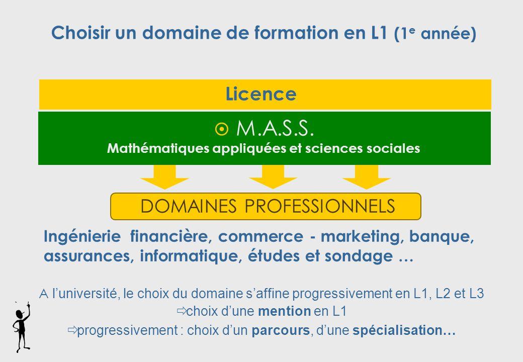Licence DOMAINES PROFESSIONNELS Ingénierie financière, commerce - marketing, banque, assurances, informatique, études et sondage …  M.A.S.S.
