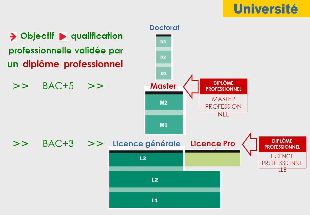 Doctorat Master Licence généraleLicence Pro Objectif qualification professionnelle validée par un diplôme professionnel LICENCE PROFESSIONNE LLE DIPLÔME PROFESSIONNEL MASTER PROFESSION NEL DIPLÔME PROFESSIONNEL BAC+5 BAC+3