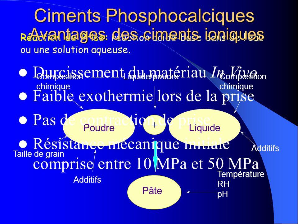+ Composition chimique Taille de grain Liquide/poudreComposition chimique Additifs Poudre Additifs Pâte Température RH pH Liquide Ciments Phosphocalci