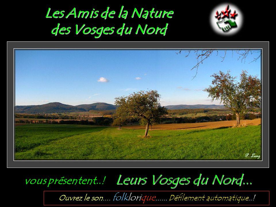 Les Amis de la Nature des Vosges du Nord Leurs Vosges du Nord...