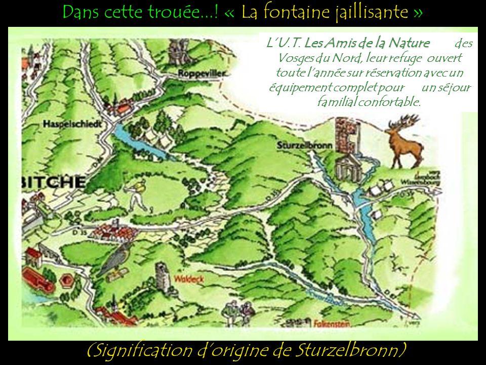 Vous cherchez un hébergement.!! Vous pouvez le trouver à (57230) Sturzelbronn..? Situé au Nord-Est du département de la Moselle...!