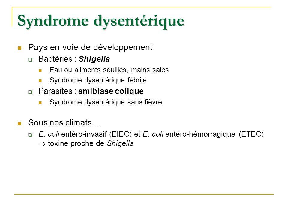 Syndrome dysentérique Pays en voie de développement  Bactéries : Shigella Eau ou aliments souillés, mains sales Syndrome dysentérique fébrile  Parasites : amibiase colique Syndrome dysentérique sans fièvre Sous nos climats…  E.