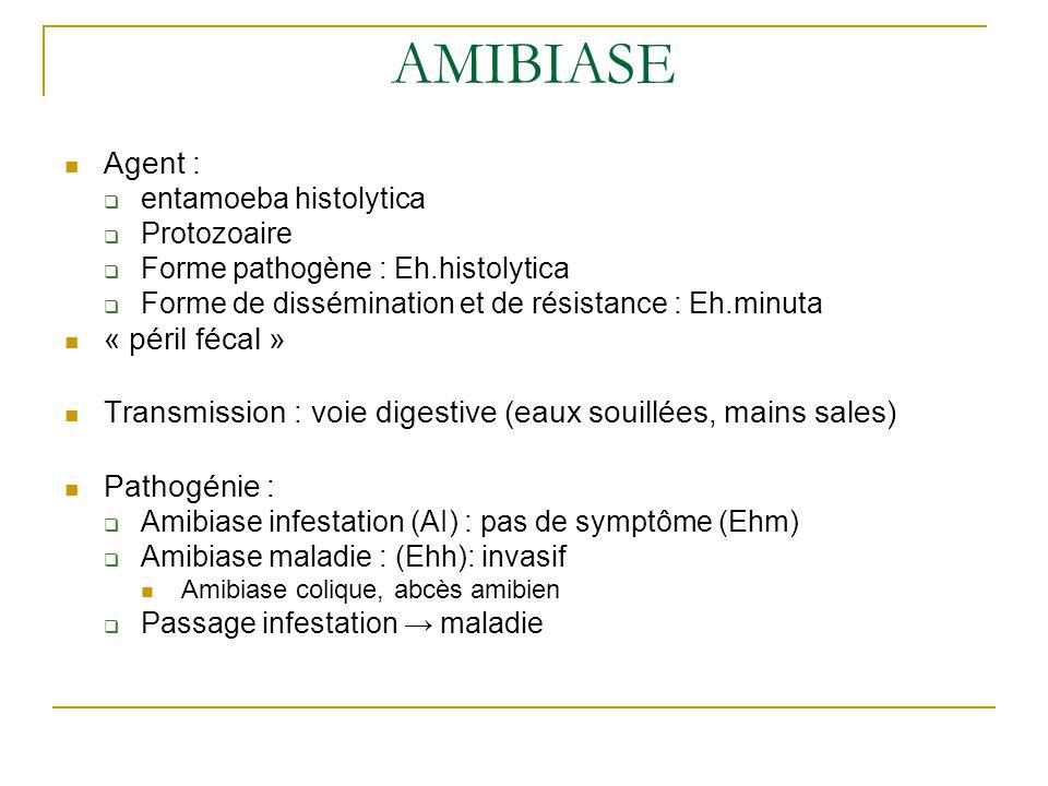 AMIBIASE Agent :  entamoeba histolytica  Protozoaire  Forme pathogène : Eh.histolytica  Forme de dissémination et de résistance : Eh.minuta « péril fécal » Transmission : voie digestive (eaux souillées, mains sales) Pathogénie :  Amibiase infestation (AI) : pas de symptôme (Ehm)  Amibiase maladie : (Ehh): invasif Amibiase colique, abcès amibien  Passage infestation → maladie