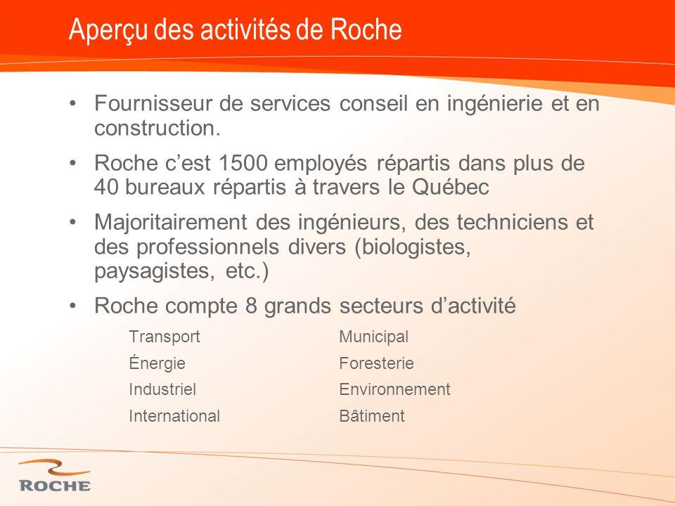 Aperçu des activités de Roche Fournisseur de services conseil en ingénierie et en construction.
