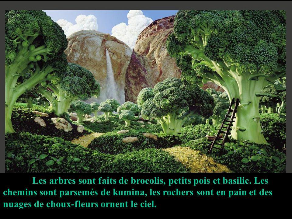 Les arbres sont faits de brocolis, petits pois et basilic. Les chemins sont parsemés de kumina, les rochers sont en pain et des nuages de choux-fleurs