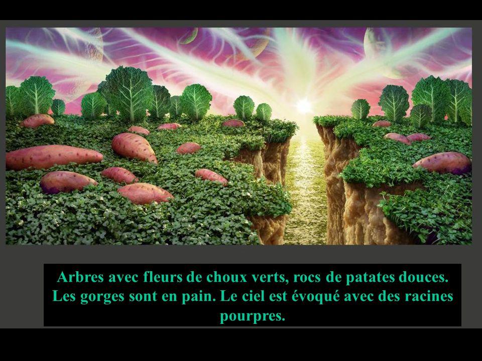Arbres avec fleurs de choux verts, rocs de patates douces. Les gorges sont en pain. Le ciel est évoqué avec des racines pourpres.