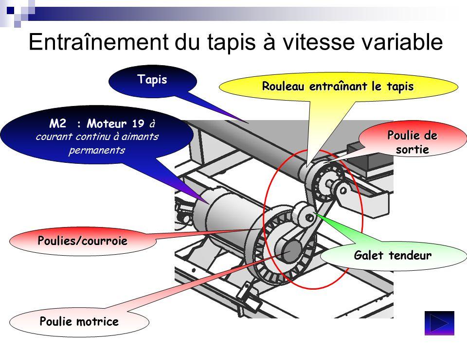 Entraînement du tapis à vitesse variable Tapis M2 : Moteur 19 M2 : Moteur 19 à courant continu à aimants permanents Poulies/courroie Poulie motrice Po