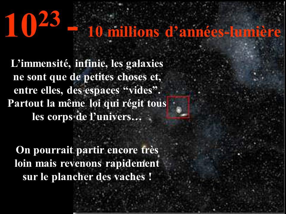 L'immensité, infinie, les galaxies ne sont que de petites choses et, entre elles, des espaces vides .
