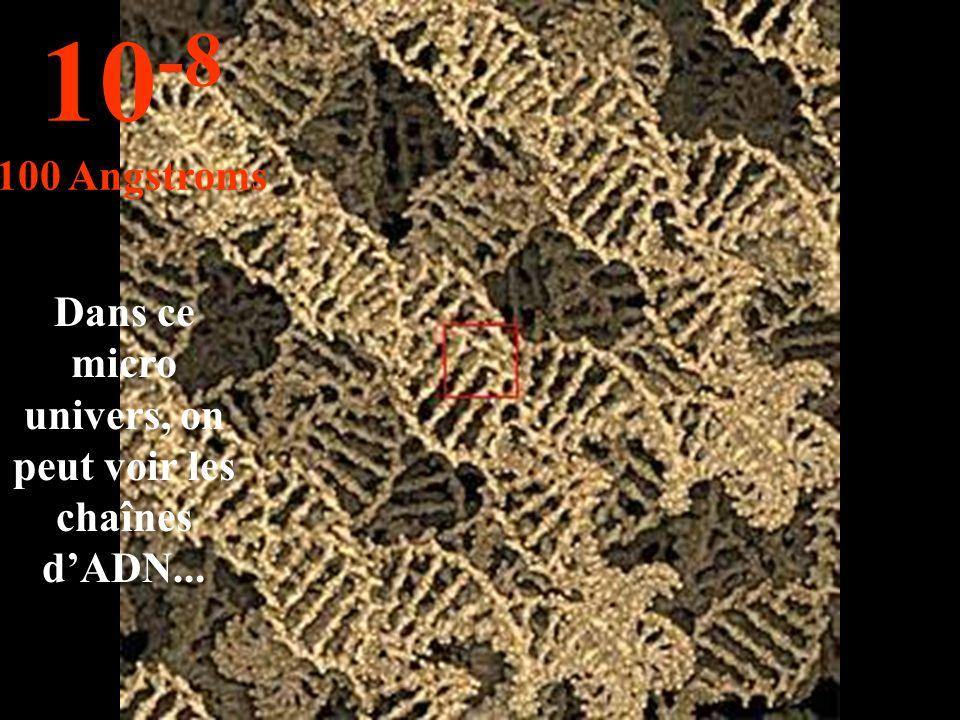 Dans ce micro univers, on peut voir les chaînes d'ADN... 10 -8 100 Angstroms