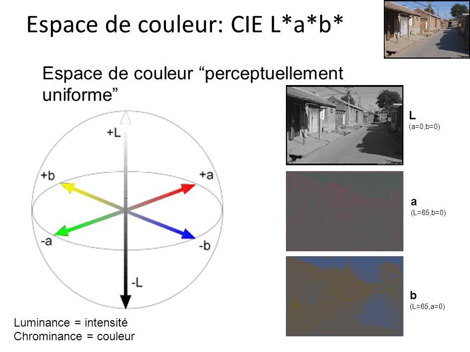 Espace de couleur: CIE L*a*b* Espace de couleur perceptuellement uniforme L (a=0,b=0) a (L=65,b=0) b (L=65,a=0) Luminance = intensité Chrominance = couleur