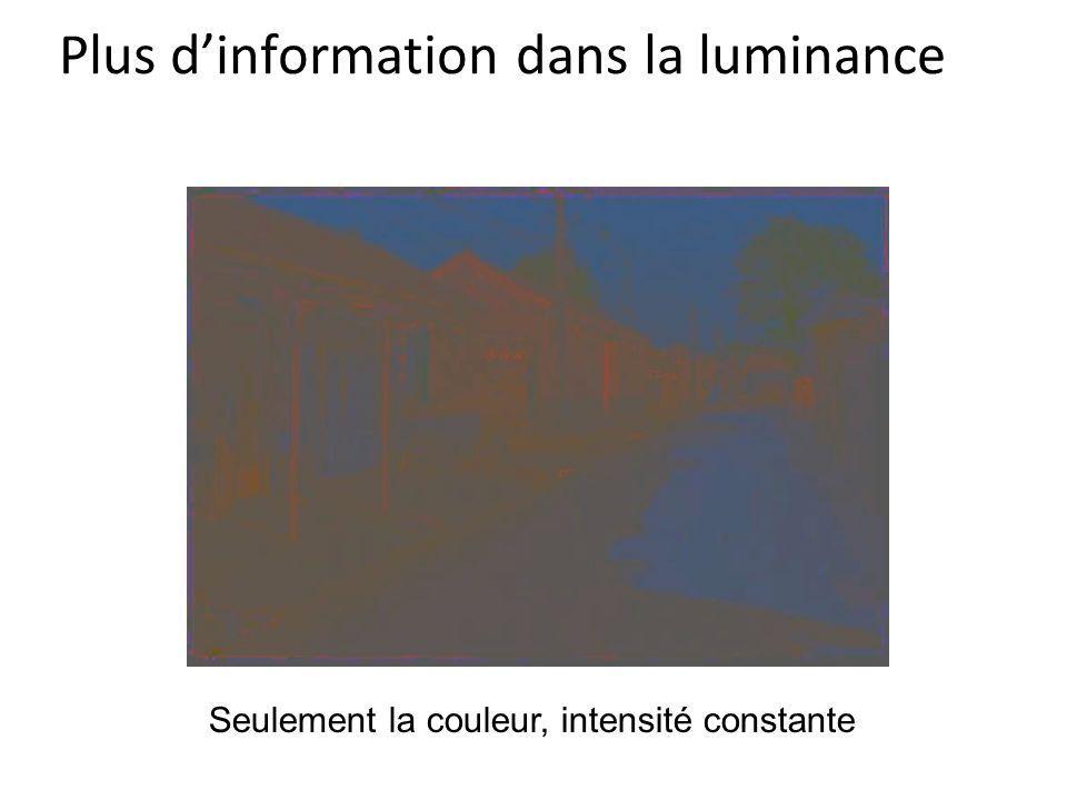 Plus d'information dans la luminance Seulement la couleur, intensité constante
