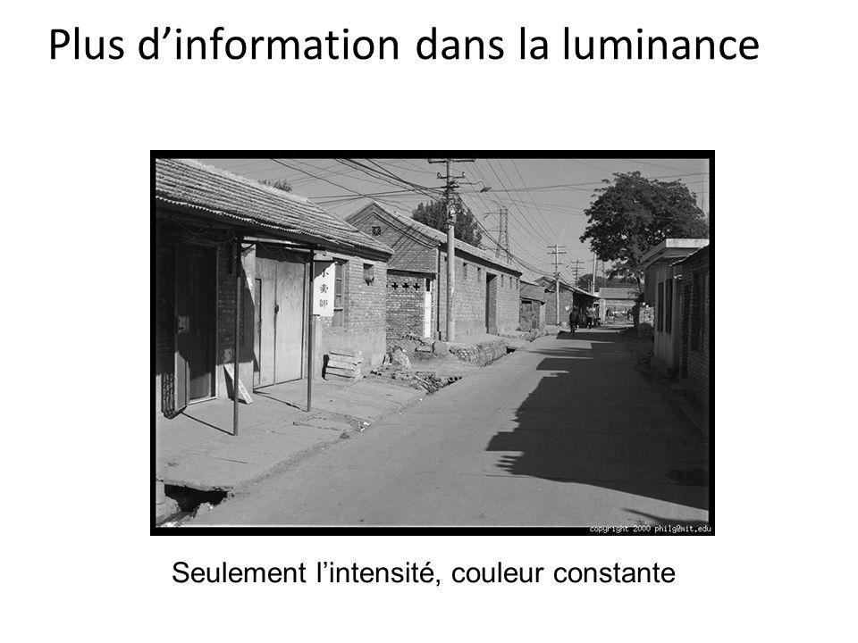 Plus d'information dans la luminance Seulement l'intensité, couleur constante