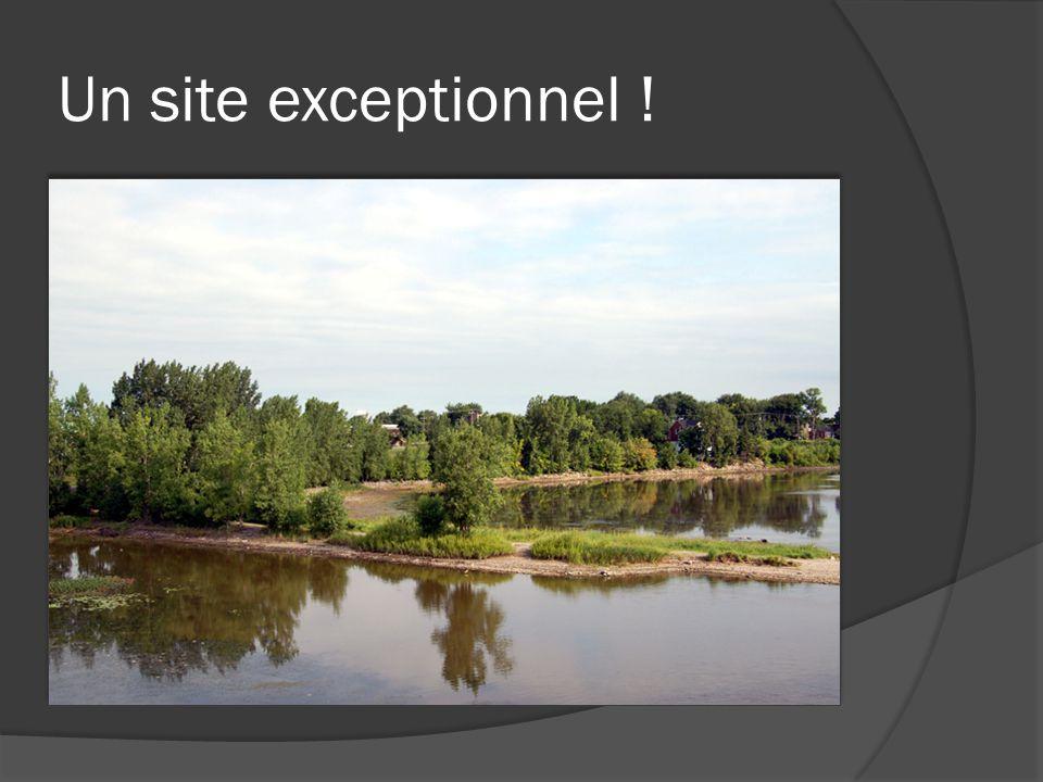 Un site exceptionnel !