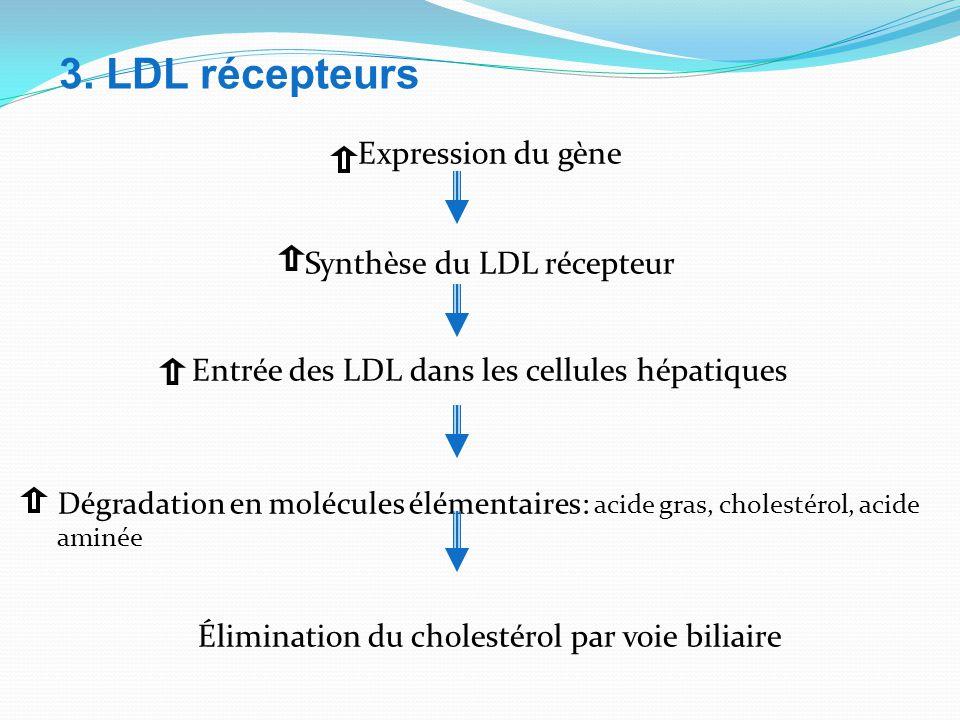 Expression du gène Synthèse du LDL récepteur Entrée des LDL dans les cellules hépatiques Dégradation en molécules élémentaires: acide gras, cholestérol, acide aminée Élimination du cholestérol par voie biliaire 3.