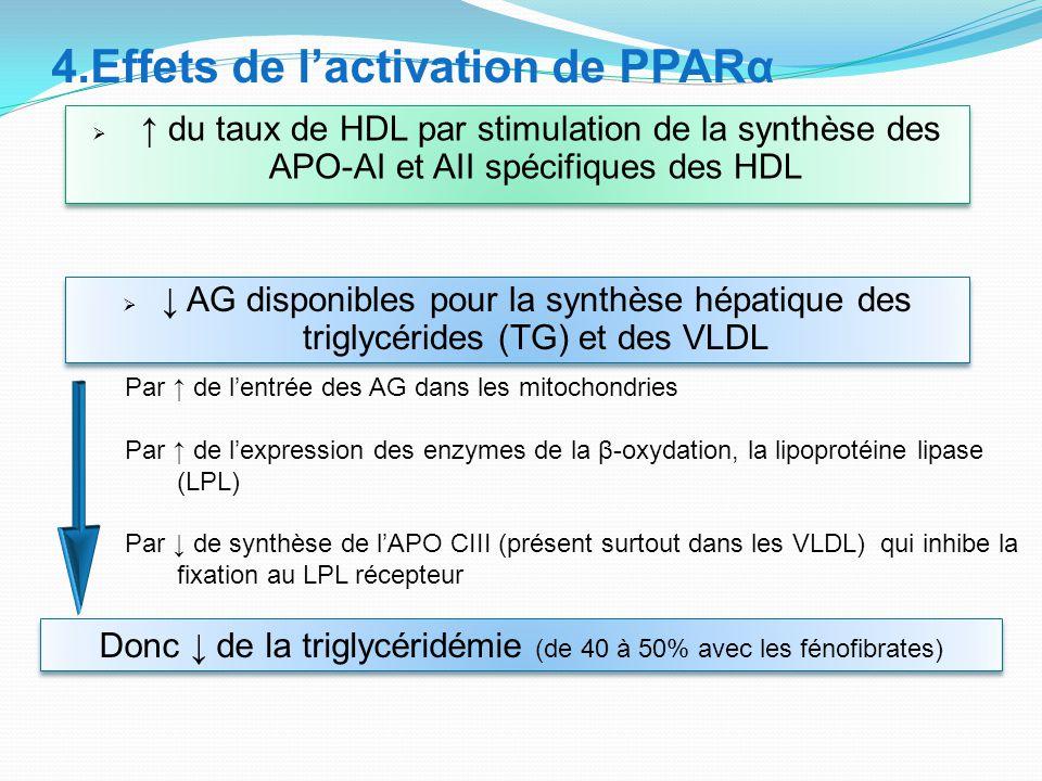  ↑ du taux de HDL par stimulation de la synthèse des APO-AI et AII spécifiques des HDL 4.Effets de l'activation de PPARα  ↓ AG disponibles pour la synthèse hépatique des triglycérides (TG) et des VLDL Par ↑ de l'entrée des AG dans les mitochondries Par ↑ de l'expression des enzymes de la β-oxydation, la lipoprotéine lipase (LPL) Par ↓ de synthèse de l'APO CIII (présent surtout dans les VLDL) qui inhibe la fixation au LPL récepteur Donc ↓ de la triglycéridémie (de 40 à 50% avec les fénofibrates)