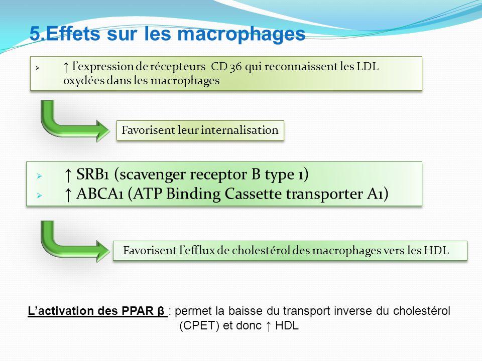 5.Effets sur les macrophages L'activation des PPAR β : permet la baisse du transport inverse du cholestérol (CPET) et donc ↑ HDL  ↑ SRB1 (scavenger receptor B type 1)  ↑ ABCA1 (ATP Binding Cassette transporter A1)  ↑ SRB1 (scavenger receptor B type 1)  ↑ ABCA1 (ATP Binding Cassette transporter A1) Favorisent l'efflux de cholestérol des macrophages vers les HDL  ↑ l'expression de récepteurs CD 36 qui reconnaissent les LDL oxydées dans les macrophages Favorisent leur internalisation
