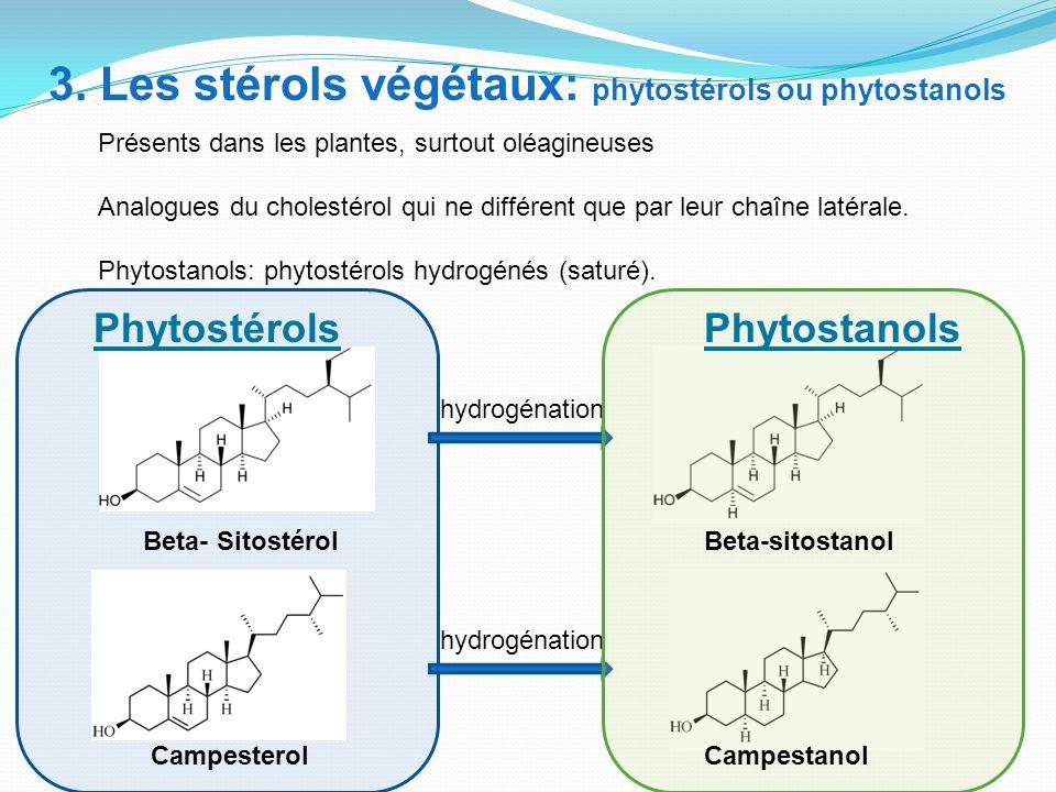 3. Les stérols végétaux: phytostérols ou phytostanols Présents dans les plantes, surtout oléagineuses Analogues du cholestérol qui ne différent que pa