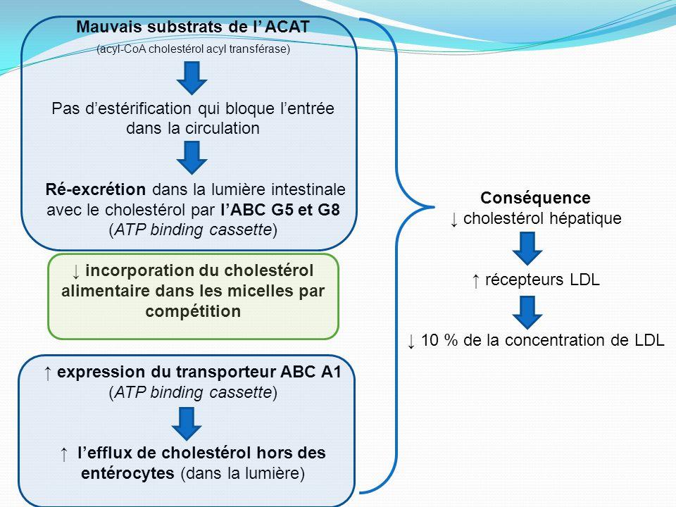 Mauvais substrats de l' ACAT (acyl-CoA cholestérol acyl transférase) Pas d'estérification qui bloque l'entrée dans la circulation Ré-excrétion dans la lumière intestinale avec le cholestérol par l'ABC G5 et G8 (ATP binding cassette) ↓ incorporation du cholestérol alimentaire dans les micelles par compétition ↑ expression du transporteur ABC A1 (ATP binding cassette) ↑ l'efflux de cholestérol hors des entérocytes (dans la lumière) Conséquence ↓ cholestérol hépatique ↑ récepteurs LDL ↓ 10 % de la concentration de LDL