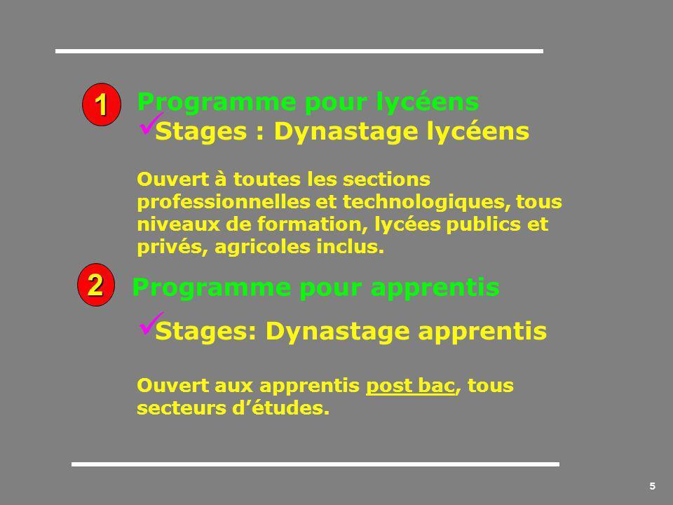 5 Programme pour lycéens Stages : Dynastage lycéens Ouvert à toutes les sections professionnelles et technologiques, tous niveaux de formation, lycées publics et privés, agricoles inclus.