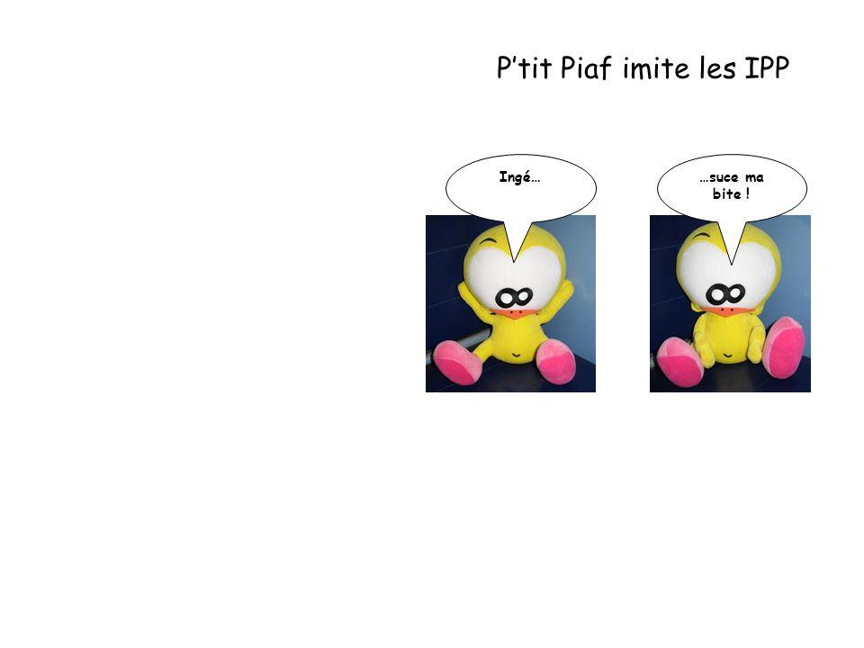 P'tit Piaf imite les IPP Ingé… …suce ma bite !
