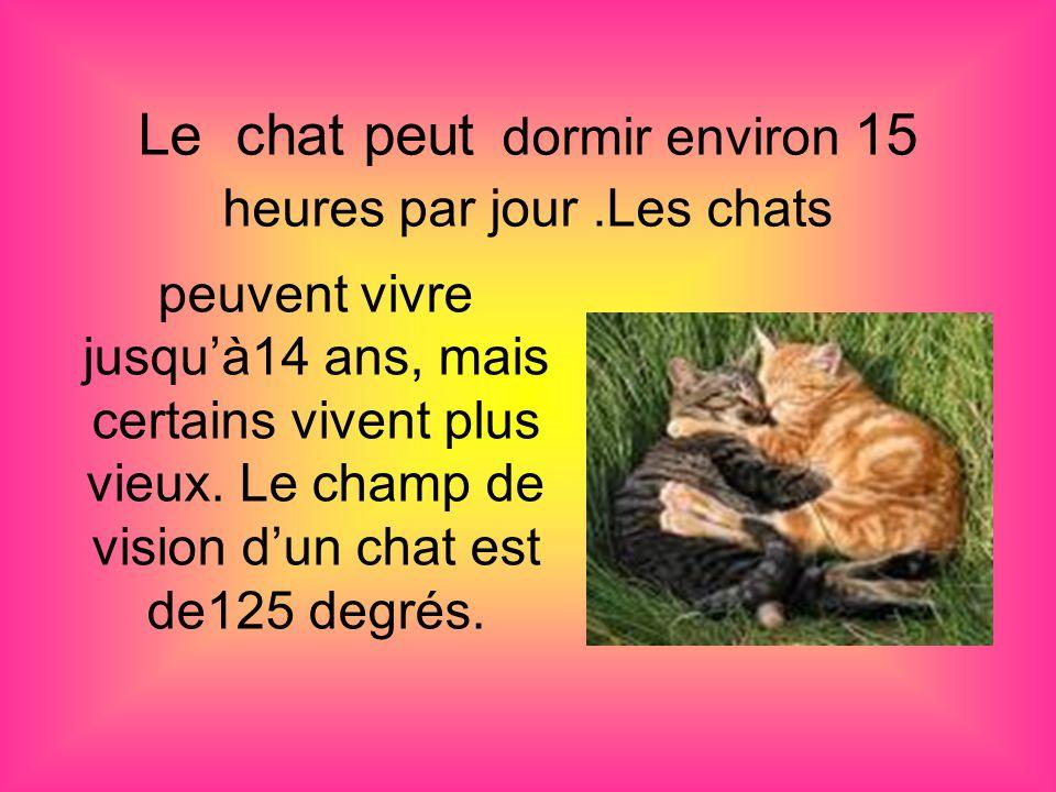 Le chat peut dormir environ 15 heures par jour.Les chats peuvent vivre jusqu'à14 ans, mais certains vivent plus vieux.