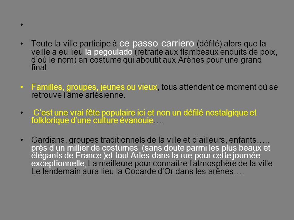 La société des Mireilles ne me semble pas très différente de celle des flamands roses, en Camargue..