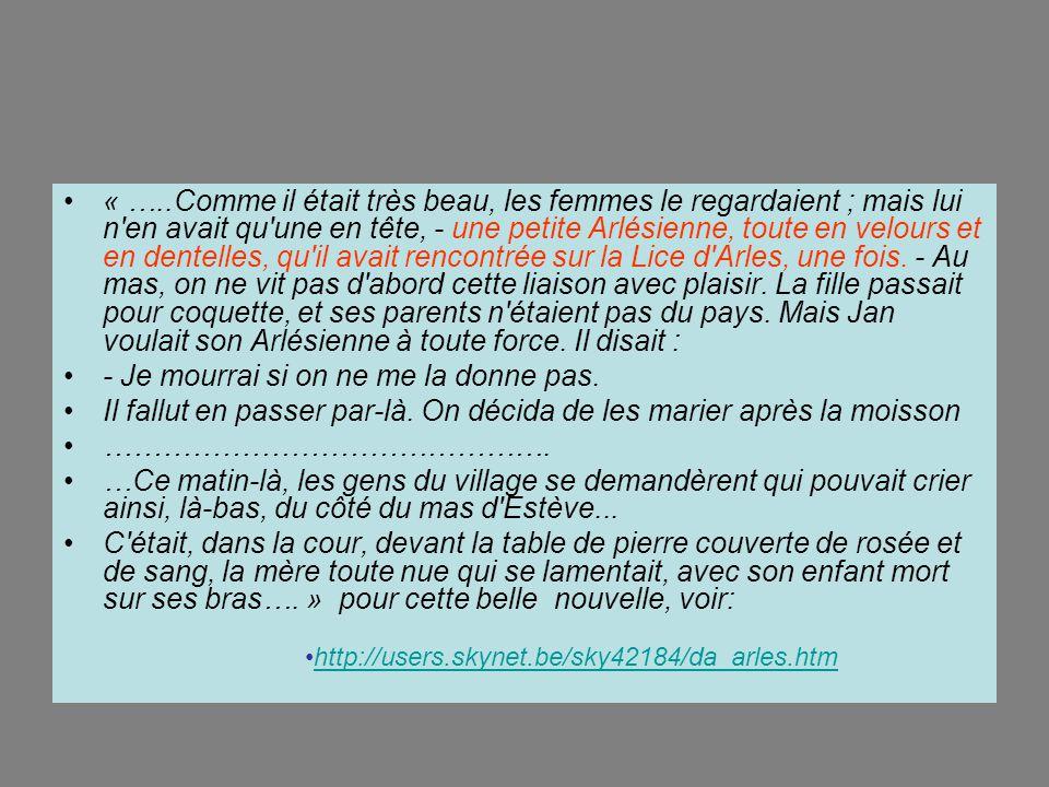 La nuit tombe sur Arles et sur le passage de Van Gogh, des Mireilles, des manades…le pegaloudo transmet le flambeau d'une génération à l'autre… Ze end !!!!!!