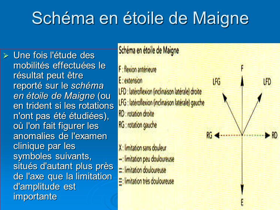 Schéma en étoile de Maigne  Une fois l étude des mobilités effectuées le résultat peut être reporté sur le schéma en étoile de Maigne (ou en trident si les rotations n ont pas été étudiées), où l on fait figurer les anomalies de l examen clinique par les symboles suivants, situés d autant plus près de l axe que la limitation d amplitude est importante