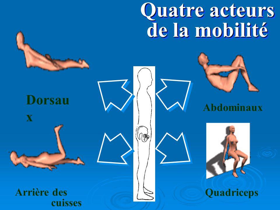 Quatre acteurs de la mobilité Dorsau x Arrière des cuisses Abdominaux Quadriceps
