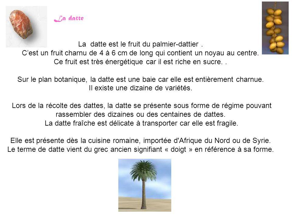 La datte La datte est le fruit du palmier-dattier. C'est un fruit charnu de 4 à 6 cm de long qui contient un noyau au centre. Ce fruit est très énergé