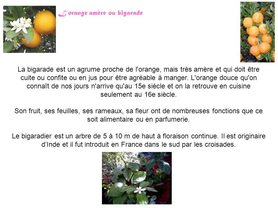 La bigarade est un agrume proche de l orange, mais très amère et qui doit être cuite ou confite ou en jus pour être agréable à manger.