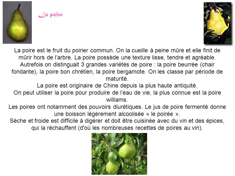 La poire est le fruit du poirier commun.