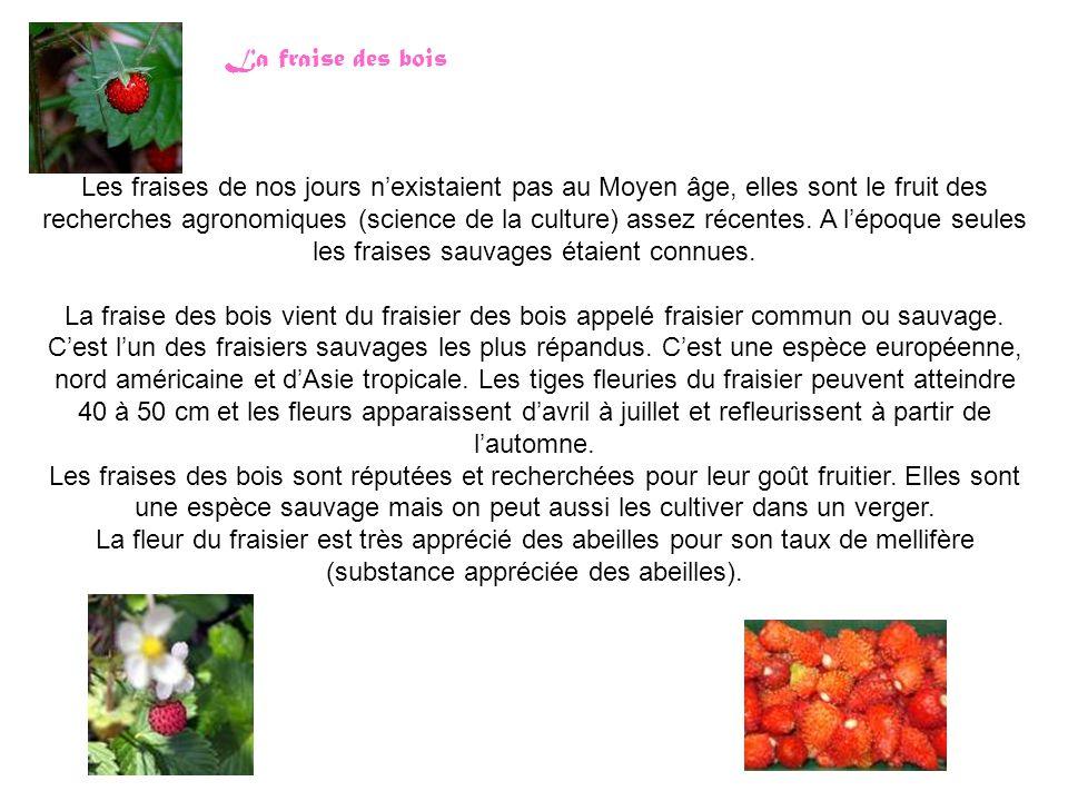 Les fraises de nos jours n'existaient pas au Moyen âge, elles sont le fruit des recherches agronomiques (science de la culture) assez récentes.