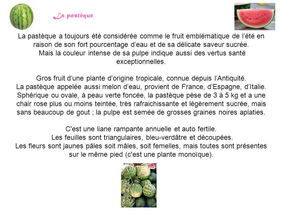 La pastèque a toujours été considérée comme le fruit emblématique de l'été en raison de son fort pourcentage d'eau et de sa délicate saveur sucrée. Ma