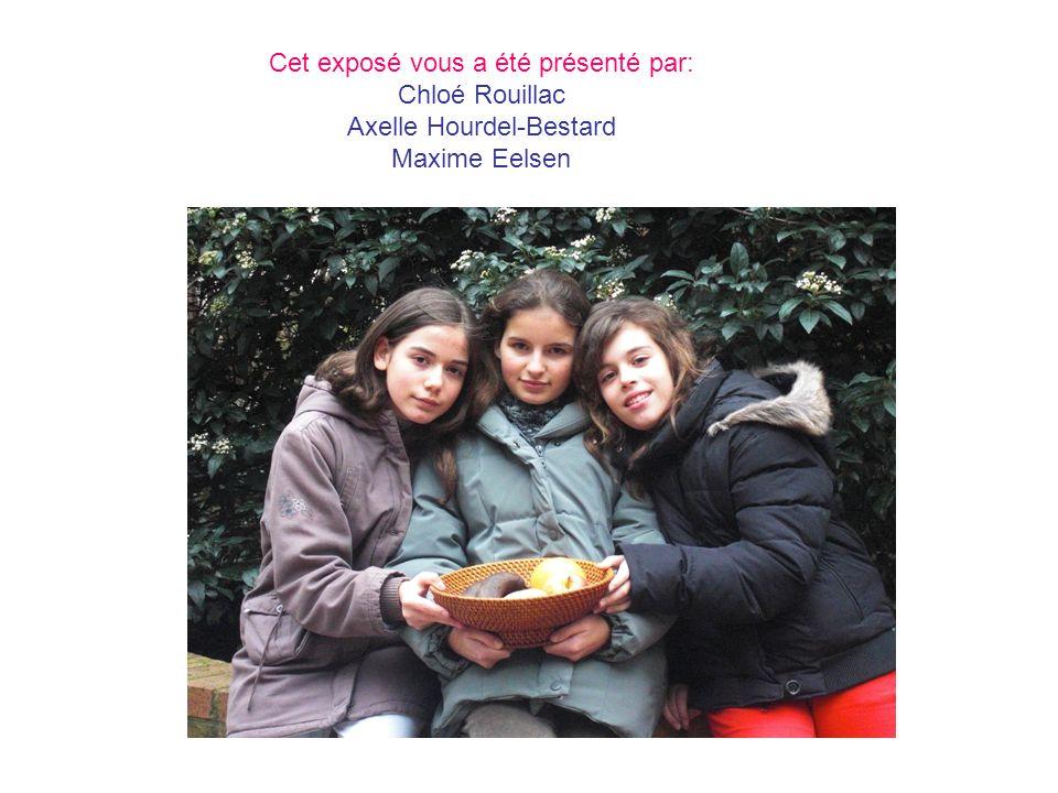 Cet exposé vous a été présenté par: Chloé Rouillac Axelle Hourdel-Bestard Maxime Eelsen